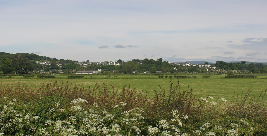 Levens from the west small