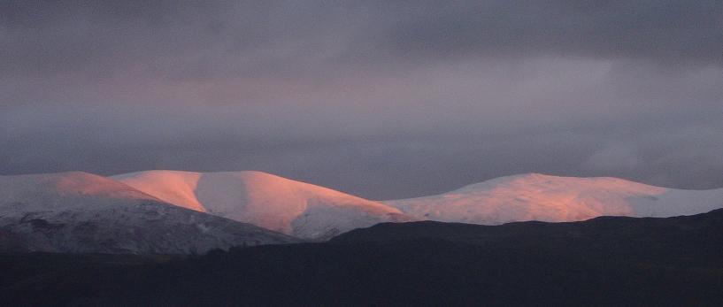 pink_snow